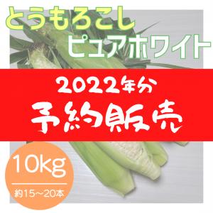 【2022年分】ピュアホワイト 約10kg