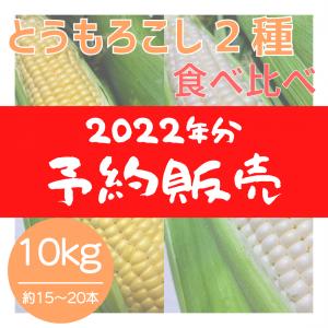 【2022年分】とうもろこし2種 食べ比べおまかせセット(10kg)