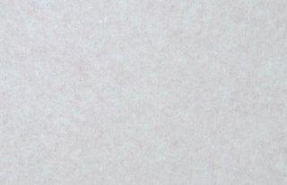祝い和紙しわ加工(白)
