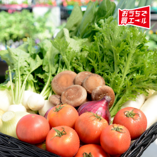 《豊平どんぐり村》旬の野菜セット 8~12品 ★送料込み(一部地域を除く)★