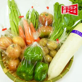 《たかの》旬野菜詰め合わせ ★送料込み(一部地域を除く)★