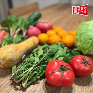 《たけはら》 道の駅たけはらセレクト新鮮野菜&果物セット ★送料込み(一部地域を除く)★