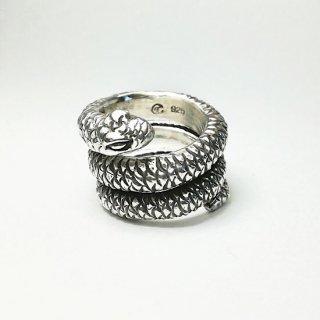 Snake ring typaA