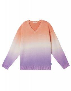 [韓国発送] 21SS V-neck sweater