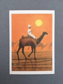 [絵はがき]朝陽の砂漠を行く
