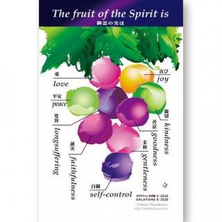 御霊の実…ガラテヤ人への手紙5:22,23