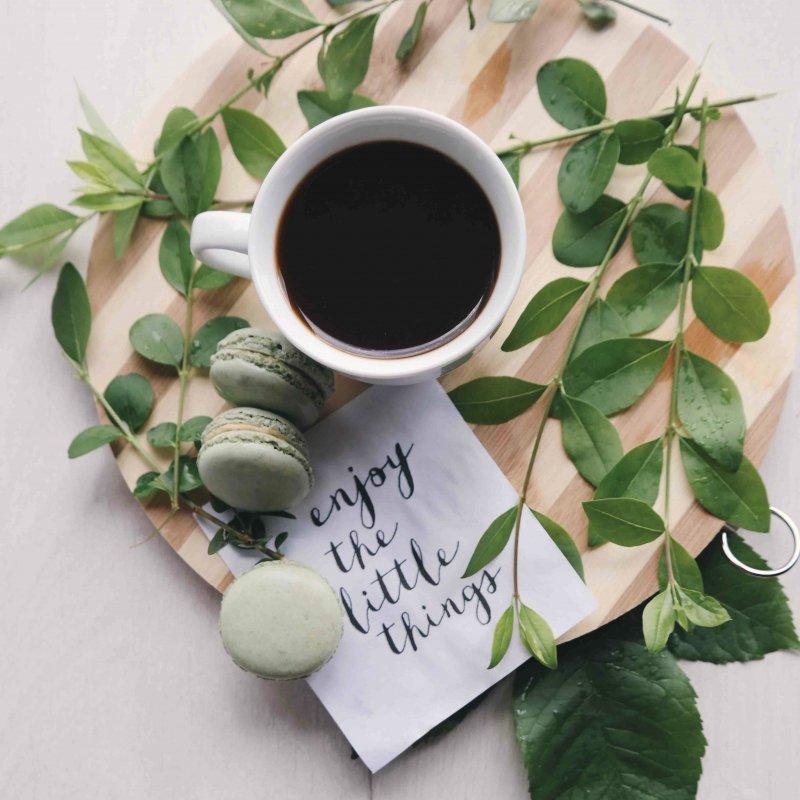 12月11日(土)開催 川越コーヒーフェス x J.C.Q.A. コーヒーインストラクター3級検定【午前の部】