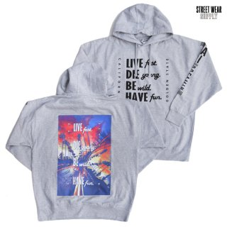 【送料無料】STREETWEAR SUPPLY LIVE FAST HOODED SWEAT【GRAY】