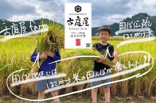 田代伝統のはさがけ米<br>古庭屋farm