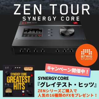 【ハンドメイドケーブルペア プレゼント ハイパーDA/AD搭載 】Zen Tour Synergy Core