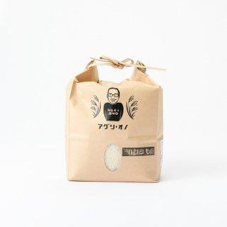 ハツシモ(1.5kg)