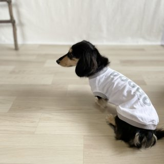 <img class='new_mark_img1' src='https://img.shop-pro.jp/img/new/icons25.gif' style='border:none;display:inline;margin:0px;padding:0px;width:auto;' />DOGGO/犬用Tシャツ(ホワイト)/ペアルック可