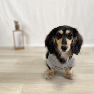 THE DOG DOD IT./犬用パーカー(杢グレー×ブラック)/飼い主とペアルック可/4,500円〜