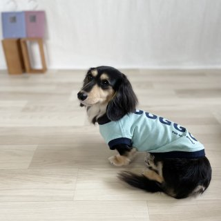 <img class='new_mark_img1' src='https://img.shop-pro.jp/img/new/icons1.gif' style='border:none;display:inline;margin:0px;padding:0px;width:auto;' />【新色】DOGGO/犬用Tシャツ(フロストスカイ)/ペアルック可