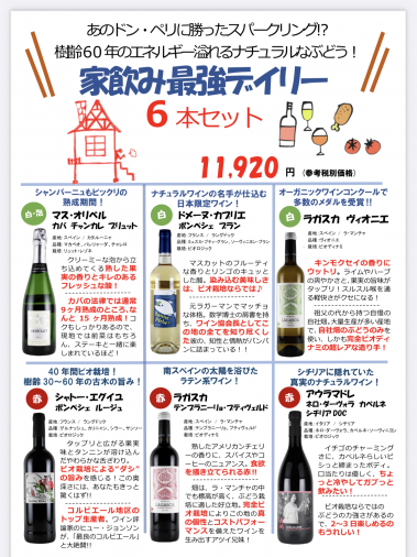 <img class='new_mark_img1' src='https://img.shop-pro.jp/img/new/icons61.gif' style='border:none;display:inline;margin:0px;padding:0px;width:auto;' />【家飲み最強デイリー 6本セット】