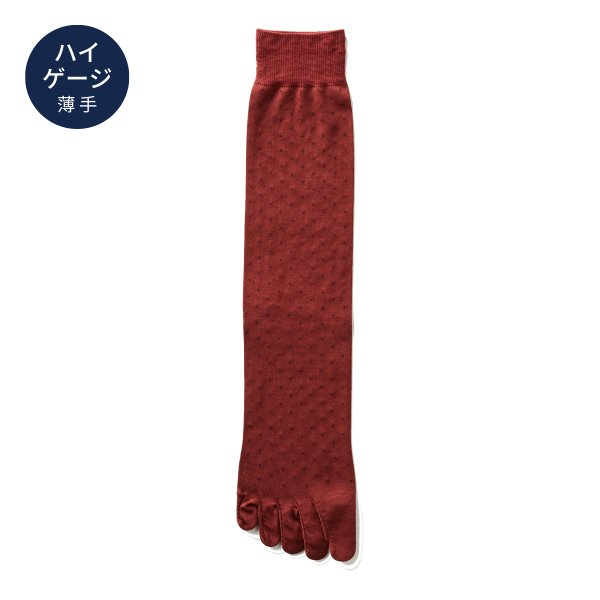【Affito】エンジ×ネイビーピンドット クルー丈 5本指ソックス 日本製 スーツスタイルに