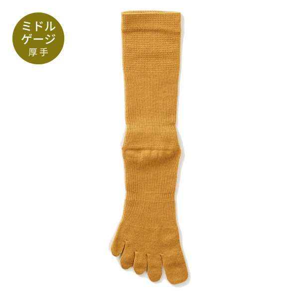 【Affito】マスタードイエロー無地 クルー丈 5本指ソックス 日本製 スーツスタイルに