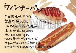 あったかいが ウインナーパン 絵ハガキサイズ【P024A】