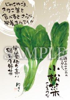 あったかいが 小松菜 絵ハガキサイズ【B031A】
