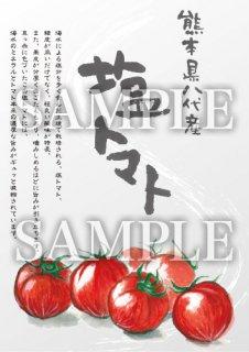 あったかいが 塩トマト 絵ハガキサイズ【B049A】
