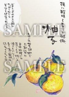 あったかいが 柚子 A4サイズラミネート加工【B086B】