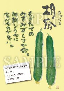 あったかいが きゅうり02 絵ハガキサイズ【B116A】