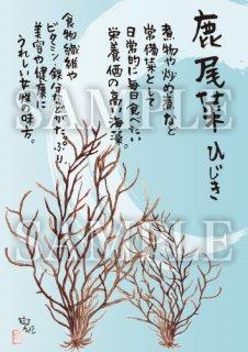 あったかいが ひじき-青 絵ハガキサイズ【F061A】