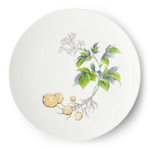 【新作予約販売】  Restaurant MAISON (Paris) - Potatoes φ29� Plate -