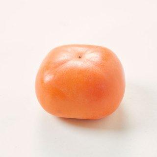 【予約販売】特別栽培 たねなし柿(家庭用)