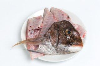 【真鯛の旨味が凝縮】真鯛のアラ