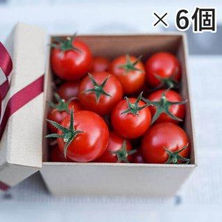 アイメックトマト【甘美郷(かんびさと)】ギフトボックス450g入り×6箱セット