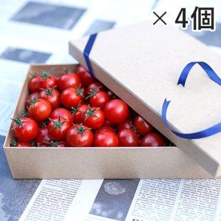 アイメックトマト【甘美郷(かんびさと)】ギフトボックス1,300g入り×4箱セット