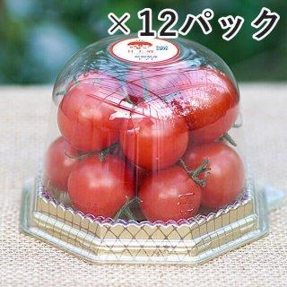 アイメックトマト【甘美郷(かんびさと)】180g入り×12パックセット