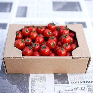 アイメックトマト【甘美郷(かんびさと)】1キロ箱