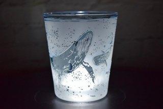 【ART空】「爽快マリン(海の仲間たち)」グラス(品番24)