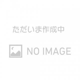 引き戸すき間ゲート オンリーキャット(今春発売予定)
