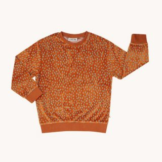 <img class='new_mark_img1' src='https://img.shop-pro.jp/img/new/icons10.gif' style='border:none;display:inline;margin:0px;padding:0px;width:auto;' />CarlijnQ mountain air sparkles sweaterの商品画像