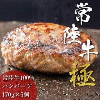 """常陸牛""""極み""""牛 100%ハンバーグ~5 個入り~"""
