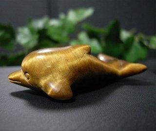 イルカ(タイガーアイ1)