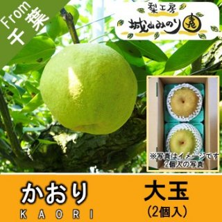 【N-H2 かおり梨 大玉2個入 \2315】幻の高級梨 特大梨 大きい品種