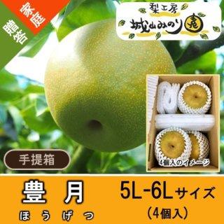 【N-K1 豊月 手提げ箱 \2315】みずみずしい梨 珍しい梨