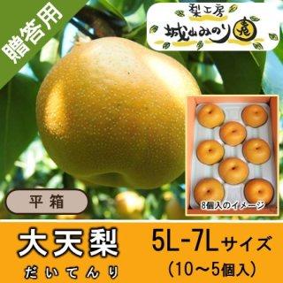 【N-L5 大天梨 5L-6Lサイズ \4000】 千葉県の梨 珍しい梨 新品種