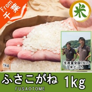 【O-B1 ふさこがね 精米 1kg】アグリスリー 米 農家 千葉 産直