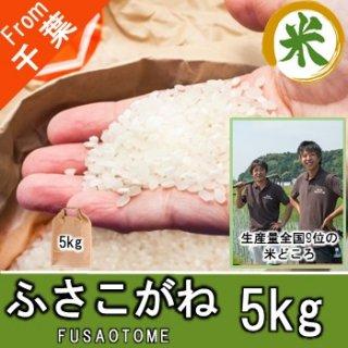 【O-B2 ふさこがね 精米 5kg】アグリスリー 米 農家 千葉 産直