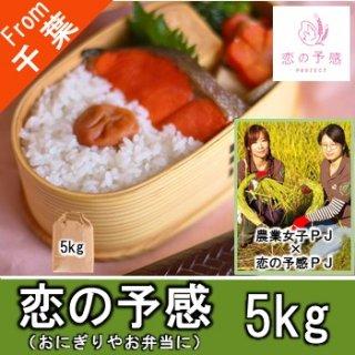 【O-F2 恋の予感 精米 5kg】女性活躍推進 農業女子 もちもち 甘み 珍しいお米