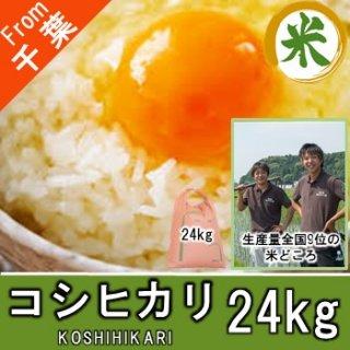 【O-D4 コシヒカリ 精米 24kg】 お米 千葉 農家直送 ちばのお米 鮮度抜群