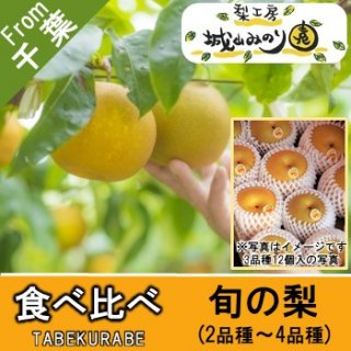 【N-Z6 食べ比べ \5000】 スタッフのイチオシの梨 旬の梨 多品種栽培