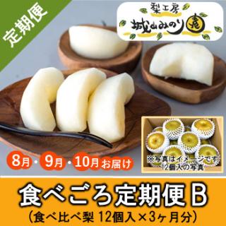 【N-Z6-2 食べごろ定期便B(食べ比べ:約大12個入×3カ月分)¥9900】
