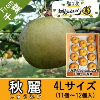 【N-G4 秋麗 4Lサイズ \3500】 城山みのり園 千葉県の梨 おいしい梨ランキング