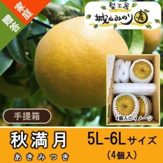 【N-O1 秋満月 手提げ箱 4〜6玉入 \3000】 新品種 千葉県 優良品種
